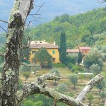 le pialle agriturismo in toscana