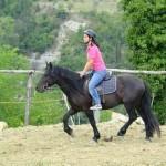 lezioni cavallo bambini