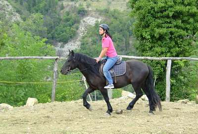 Lezioni cavallo bambini agriturismo podere le pialle for Cavallo da disegnare per bambini
